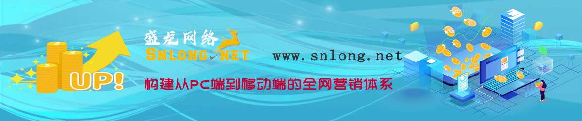 盛龙网络-构建互联网生态,助力全网营销