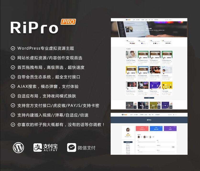 wordpress日主题RiPro6.7